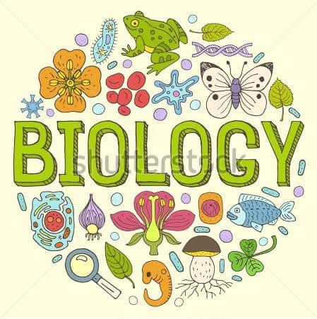 AQA A level Biology