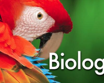 AQA GCSE Biology (9-1)